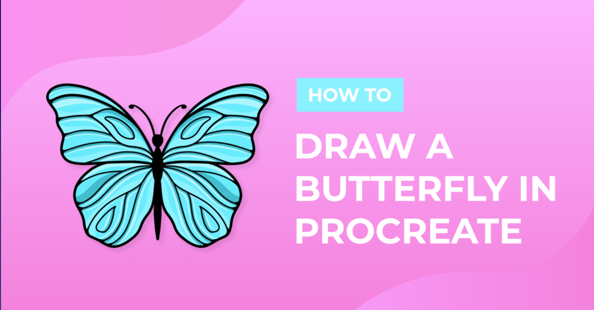 How to Draw a Butterfly in Procreate