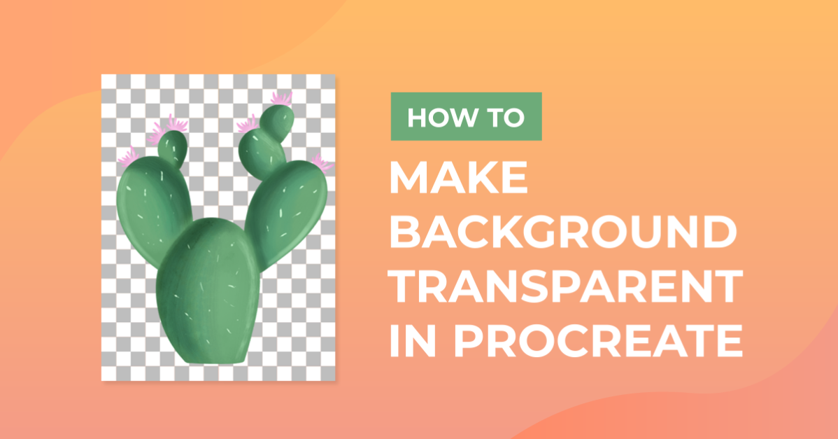 How to Make Background Transparent in Procreate