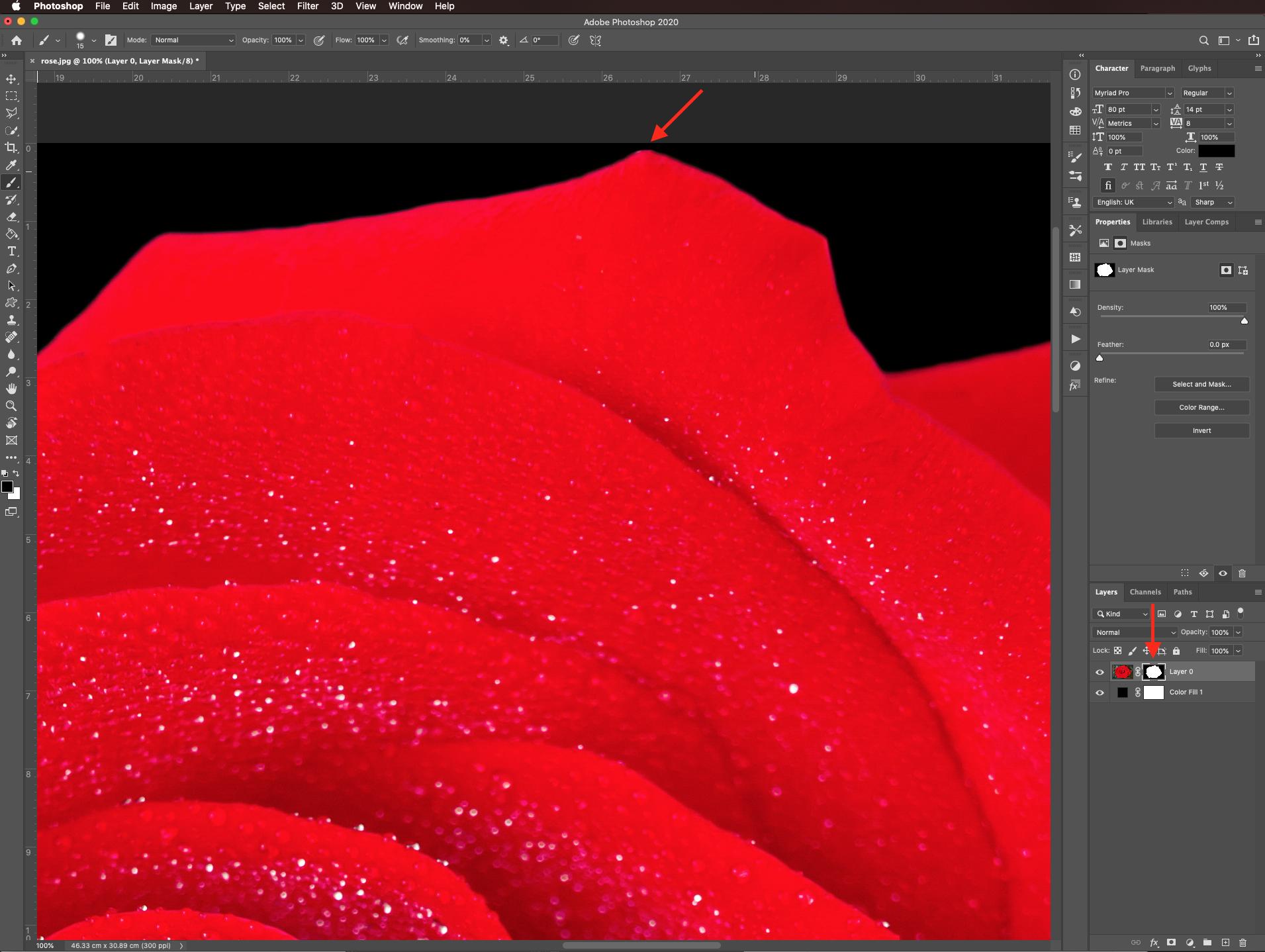 Refine mask edges in Photoshop